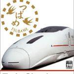 Train Simulator Kyushu Shinkanse, Zugsimulator aus Japan für die PS2